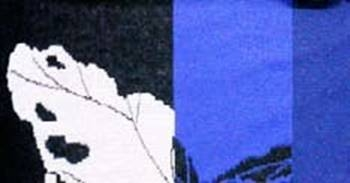 negro-azulon